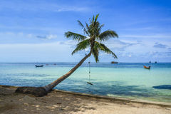 A beautiful beach with palm tree at Koh Tao, Thailand. A beautiful colorful beach with a palm tree at Koh Tao, Thailand Royalty Free Stock Photo