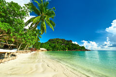 Beautiful beach with palm tree at Seychelles Stock Photo