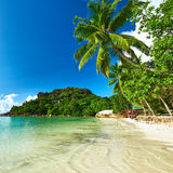 Beautiful beach with palm tree at Seychelles Stock Images