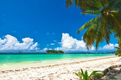 Beautiful beach with palm tree at Seychelles Stock Photography