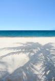 Beautiful beach with palm tree shadow. Stock Image