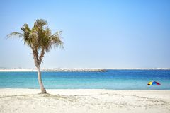 Beautiful beach with palm tree, summer concept. Beautiful beach with palm tree, summer holidays concept Royalty Free Stock Images