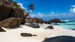 Beautiful beach with palm trees. At the seychelles Royalty Free Stock Image