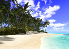 Beautiful Beach with Palm Trees. 3D digital render of a beautiful beach with palm trees, blue sky background Royalty Free Stock Images