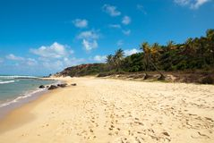 Beautiful beach with palm trees at Praia do Amor Royalty Free Stock Photography
