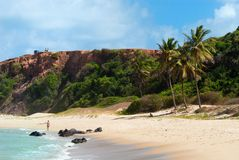 Beautiful beach with palm trees at Praia do Amor Royalty Free Stock Photos