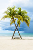 Beautiful beach with palms Stock Photography