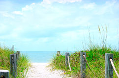 Beautiful Beach Path Scene With Sea Oats Stock Photos
