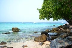 Beautiful beach in Pattaya, Thailand. Beautiful beach for holiday, Thailand Royalty Free Stock Image