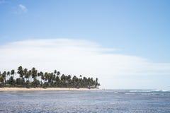 Praia do Forte in Bahia, Brazil. Beautiful beach of Praia do Forte close to Salvador in Bahia, Brazil royalty free stock images