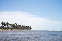 Praia do Forte in Bahia, Brazil royalty free stock images