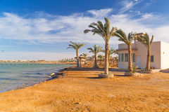 Beautiful beach of Red Sea Stock Photography