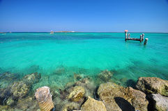 Beautiful beach at bahamas. The beautiful beach and rocks at Coco Cay, Bahamas Stock Image