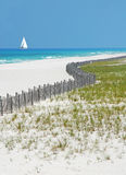 Beautiful Beach and Sailboat. Curved dunes and fence with sailboat on ocean in background Royalty Free Stock Image