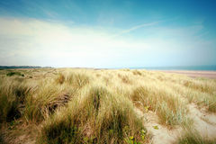 Beautiful beach with sand dunes and blue sky in UK stock images