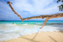 Beautiful beach and sand Royalty Free Stock Photo
