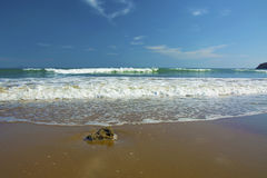 Beautiful beach, on the sand roll frothy waves. Fluffy waves on the shore Royalty Free Stock Photography