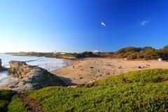 Beautiful Beach in Santa Cruz Royalty Free Stock Photos