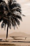 Beautiful beach in Sanya. Boat and coconut tree in Sanya beach, Hainan island,China Stock Photos