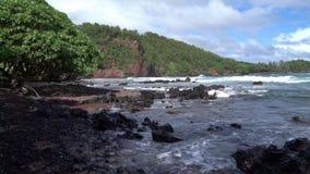 Beach Scene in Maui Hawaii. Beautiful Beach Scene in Maui Hawaii stock video