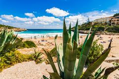 Beautiful beach scenery at bay of Cala Mandia on Majorca, Spain. Mallorca beach of Cala Mendia, idyllic bay seaside, Spain Balearic islands, Mediterranean Sea Stock Photos