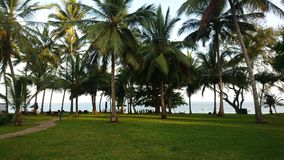 Beautiful beach scenery at the coast. Mombasa Royalty Free Stock Photos