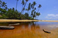 Beautiful beach scenic with coconut tree anf blue sky Royalty Free Stock Photos