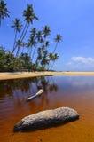 Beautiful beach scenic with coconut tree anf blue sky Royalty Free Stock Photo