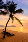 Beautiful beach and sea with palm tree Royalty Free Stock Photos