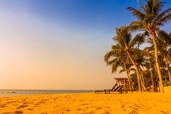 Beautiful beach and sea with palm tree Stock Image
