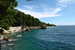 Beautiful beach. Beautiful sea under trees in summer Royalty Free Stock Photos