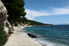 Beautiful beach. Beautiful sea under trees in summer Royalty Free Stock Images