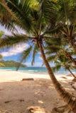 Beautiful beach at Seychelles, Mahe, vertical Royalty Free Stock Images