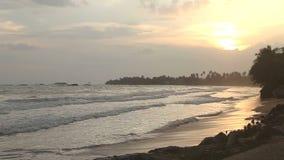 Beautiful beach in Sri Lanka at sunset stock video
