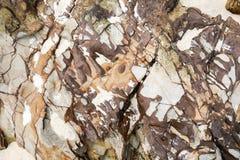 Beautiful beach stones and rocks background stock photos