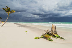 Beautiful beach. Storm sky over the sea Royalty Free Stock Photography