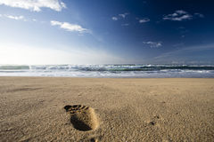 Beautiful beach Stock Photography