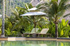 Tropical beach with swimming pool, coconuts palm trees, two deck chairs and umbrella near sea, Thailand. Beautiful beach with swimming pool, coconuts palm trees Stock Photography