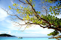Beautiful beach from Thailand stock photography