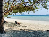 Beautiful beach. Tree sun sea phuket phephe holiday stock image