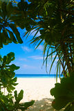 Beautiful beach on a tropical island Stock Images