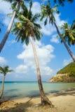 Beautiful beach and tropical sea Stock Image