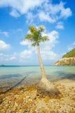 Beautiful beach and tropical sea Royalty Free Stock Photo