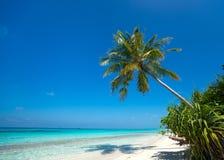 Beautiful beach and tropical sea Stock Photos