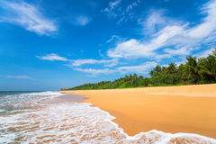 Beautiful beach and tropical sea Stock Images