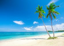 Beach and tropical sea. This is beautiful beach and tropical sea Stock Images