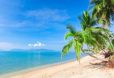 Beach and tropical sea. This is beautiful beach and tropical sea Stock Photos