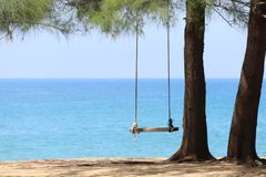 Beautiful beach under pine trees with swing stock photography