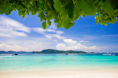 Beautiful Beach under the tree Royalty Free Stock Photos