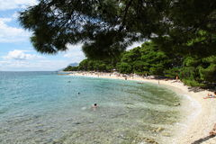 Beautiful beach. Under tree in summer Stock Photography